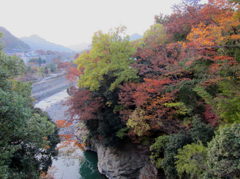 saruhashi-3.jpg